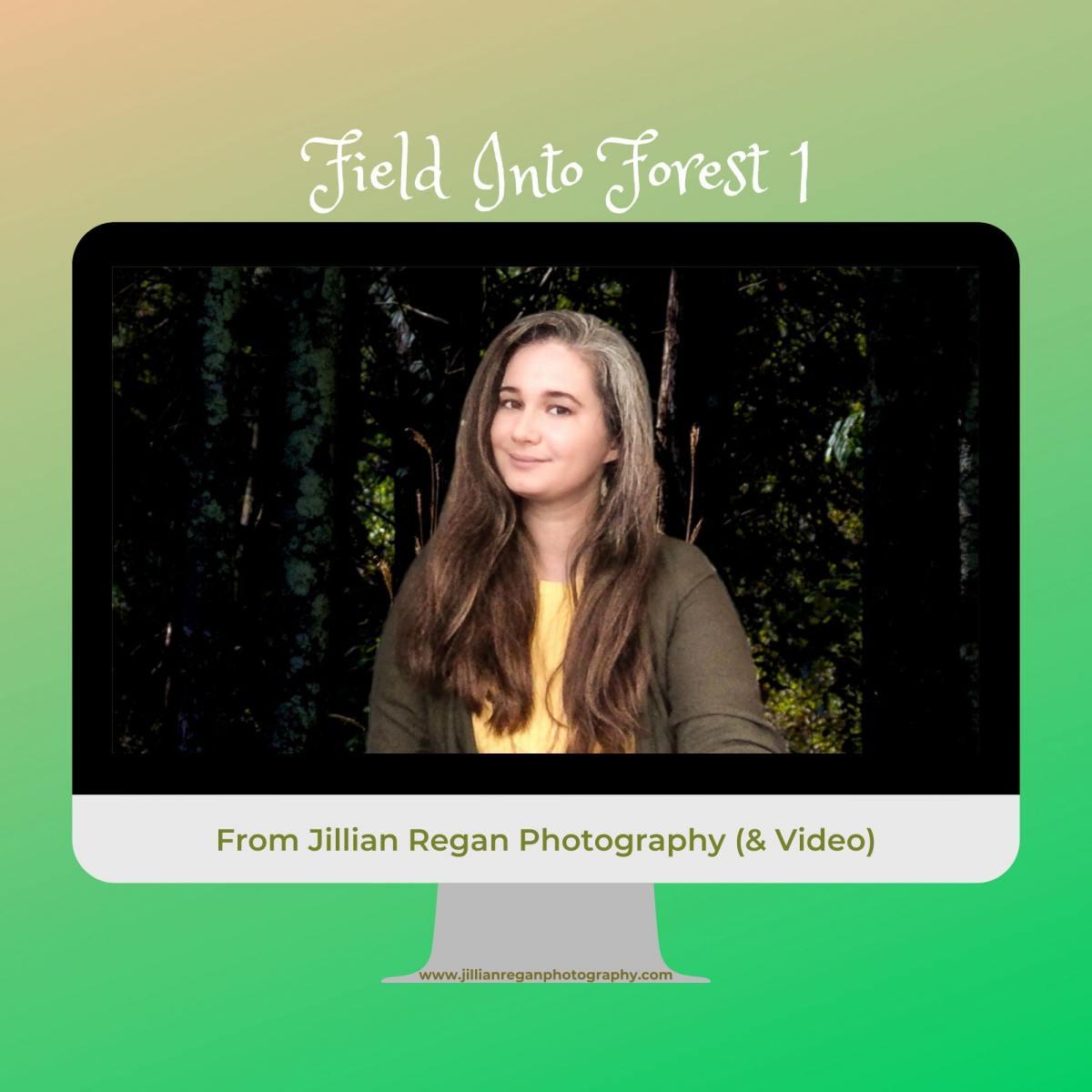 FieldIntoForest1