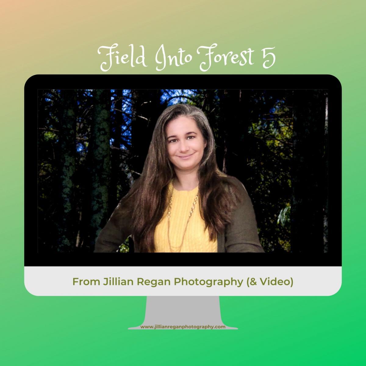 FieldIntoForest5