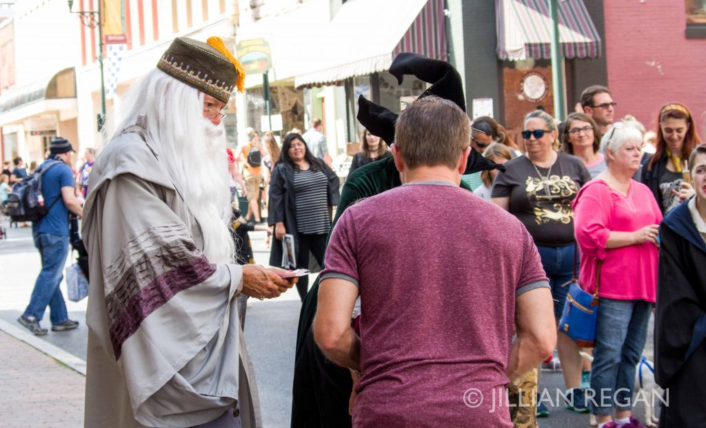 Dumbledore at Harry Potter Festival Staunton VA