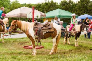 Fluvanna Old Farm Day Pony Rides